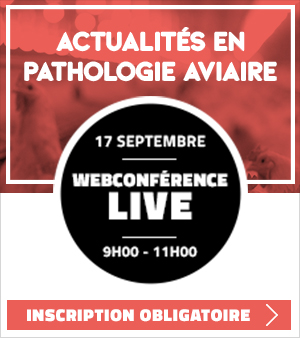 Conférence Pathologie Aviaire